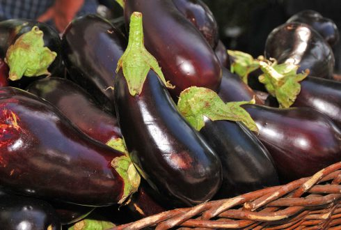 How to choose an eggplant without seeds?