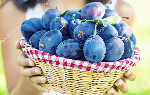 Plum compote EKO recognized as quality experts Moscow24